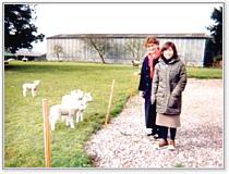 farmstay02_01